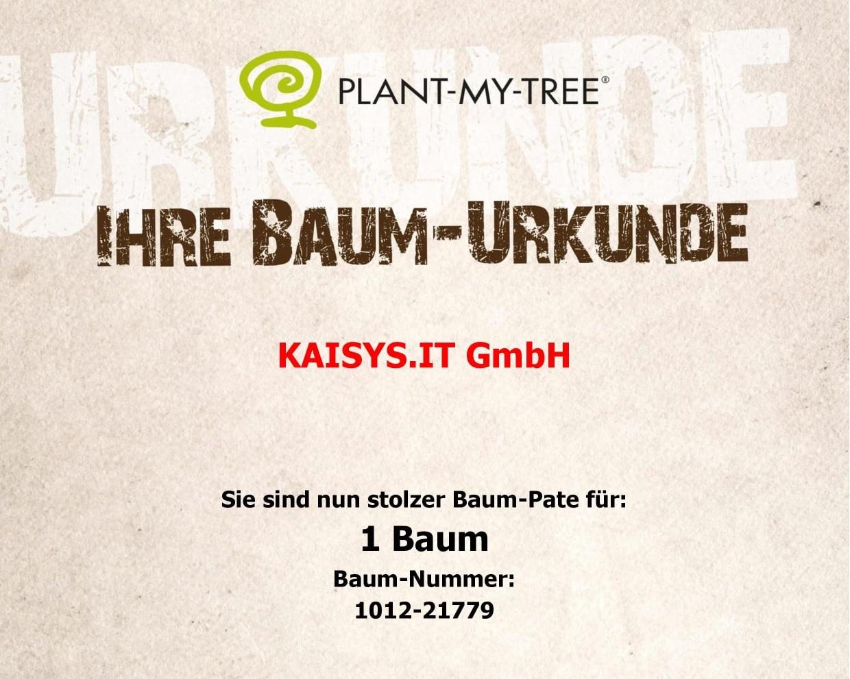kaisys-it-urkunde-baum-nachhaltigkeit-reutlingen